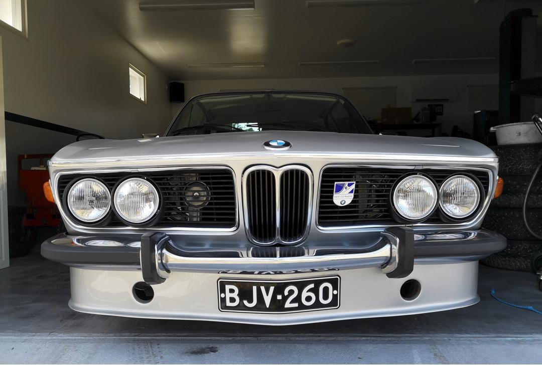 BMW five bar grill.jpg